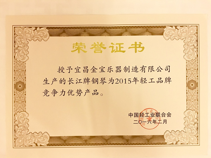 6 中国轻工品牌竞争力优势产品.jpg
